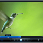 Top Video Players for Windows
