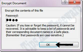password protect word and excel documents