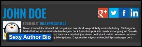 Author Bio Box Plugins For WordPress