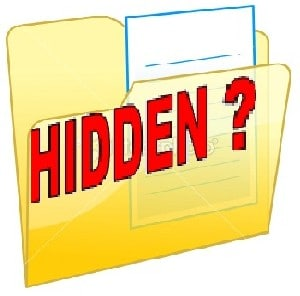 see hidden files in windows